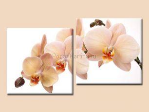 Карамельные цветы