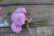 Букетик хризантемки розовые