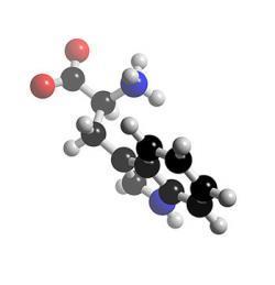L-Тирозин 100г Wirud (Германия)