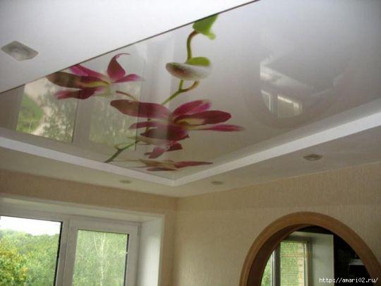 Натяжной потолок с фотопечатью (цена за кв.м фотопечати)