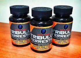 Восстановитель Tribulus (Navi Labs) 350 мг 120 капсул