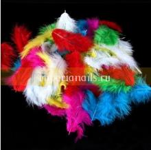 Перья цветные набор 120 шт микс