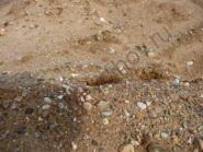 ПГС (Песчано Гравийная Смесь) волхов