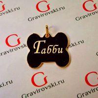 адресник для собаки Ульяновск