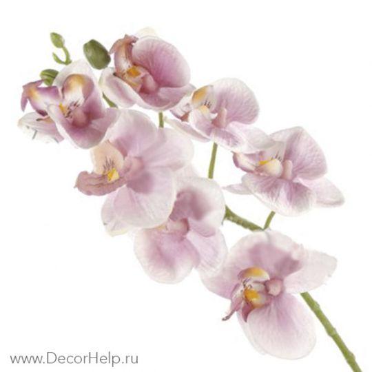 Орхидея розовая (10шт) арт: DCF007