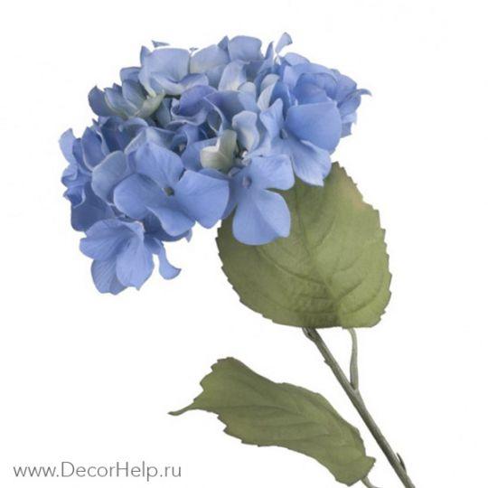 Гортензия синяя (10шт)  арт: DCH002