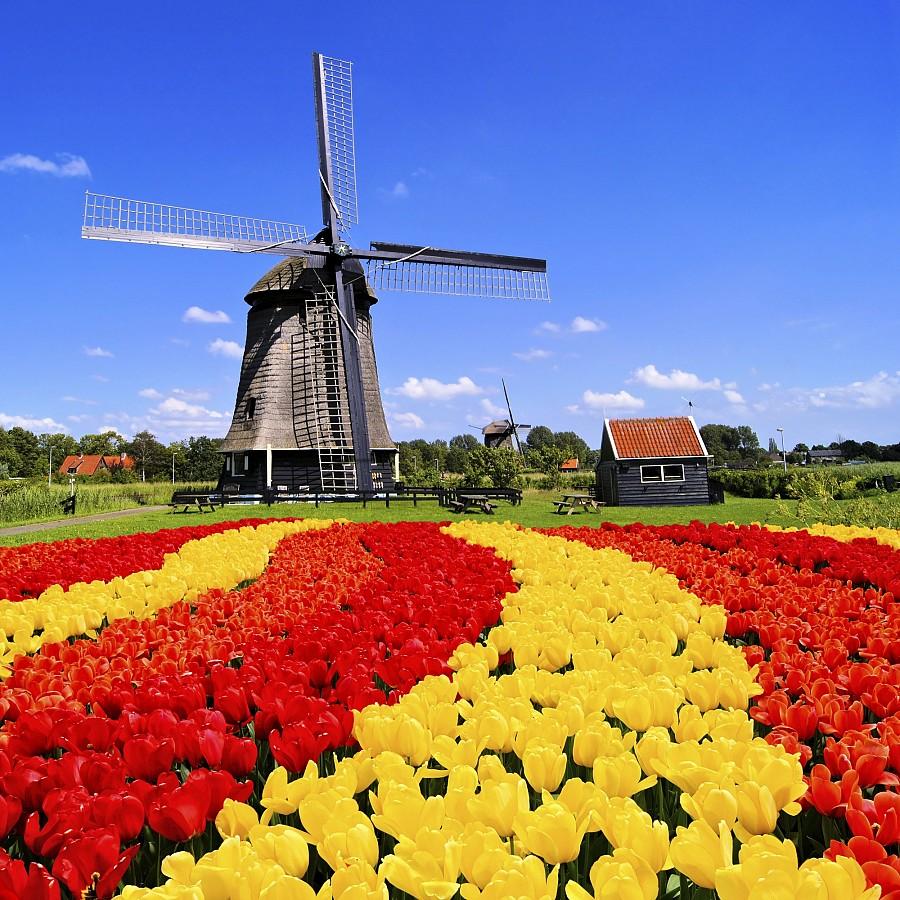 Берлин-Амстердам – парк цветов Кекенхоф - Дрезден. Самая выгодная цена!