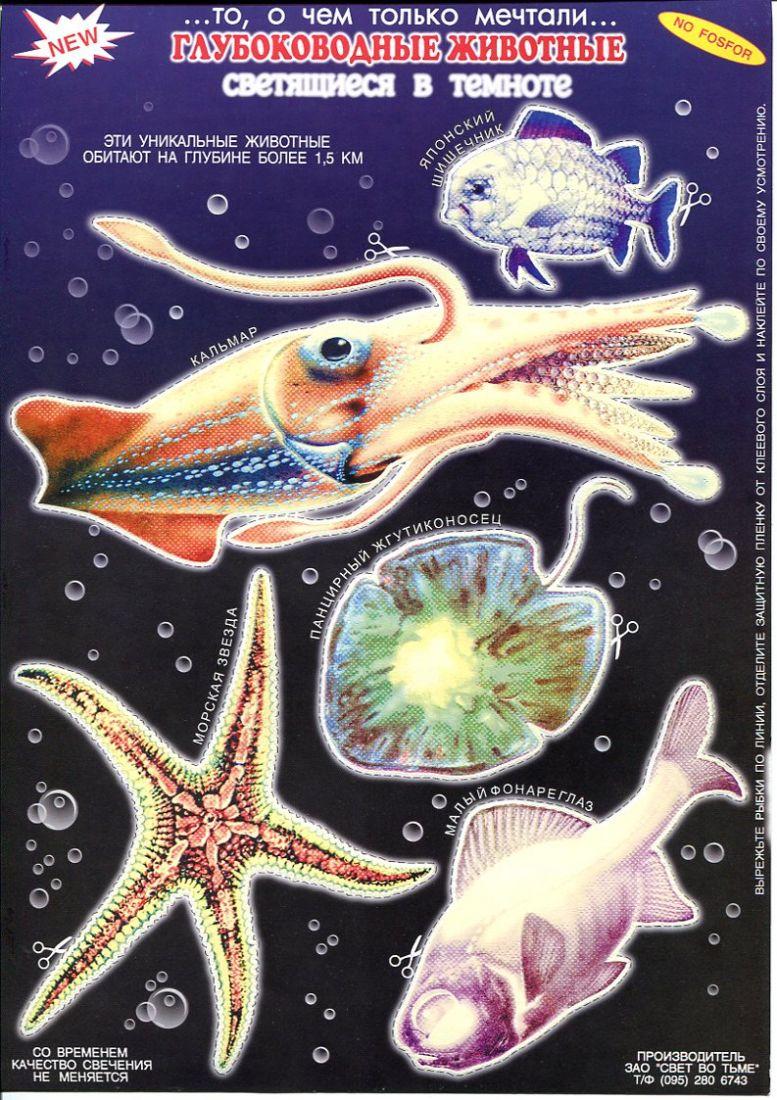 Глубоководные животные