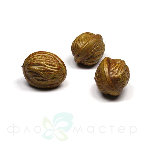 Декоративный грецкий орех