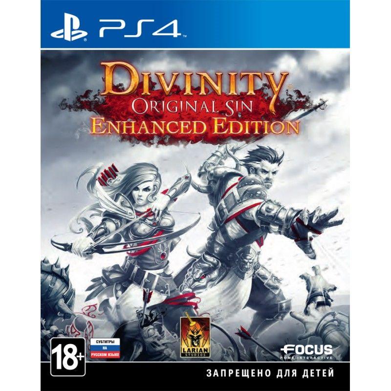 Игра Divinity Original Sin (PS4, русские субтитры)
