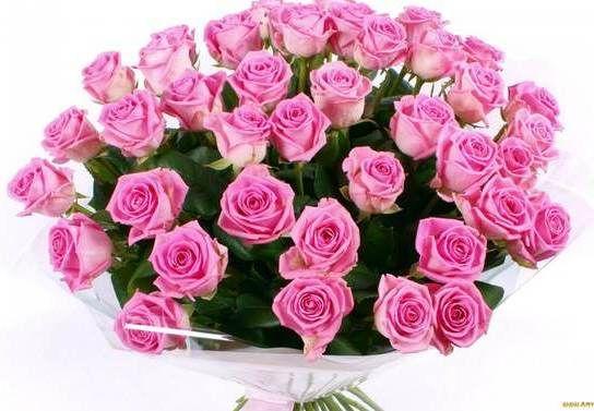 Розы розовые Аква