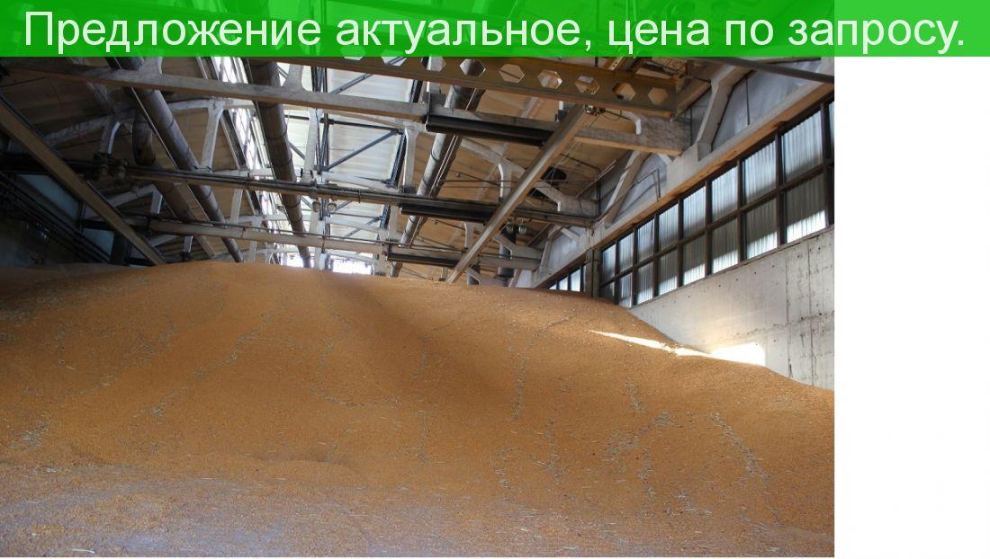 Продается грузовой терминал в порту города Ейска.
