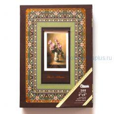 Фотоальбом в футляре на 300 фотографий А223 ( цвет: коричневый)