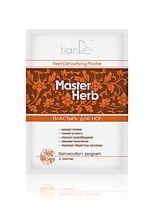 Пластырь для ног детоксикационный Master Herb 2 шт.