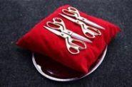 Аренда ножниц и красной подушки-подноса