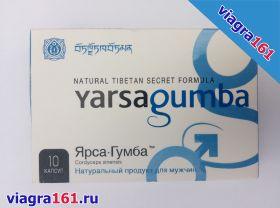 ЯрсаГумба (Yarsagumba)