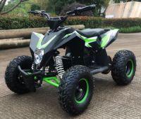 MOTAX Gekkon 1300W Электроквадроцикл