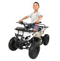 MOTAX ATV Mini Grizlik X-16 бензиновый ручной стартер белый посадка 1