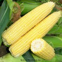 Кукуруза Сахарная 1/пачаток