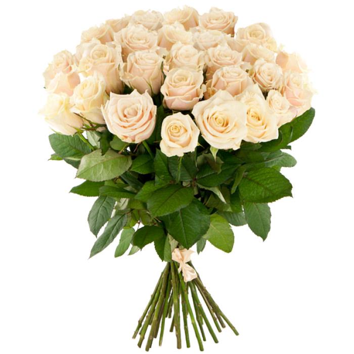 АКЦИЯ: Розы Россия 60 см 21 шт