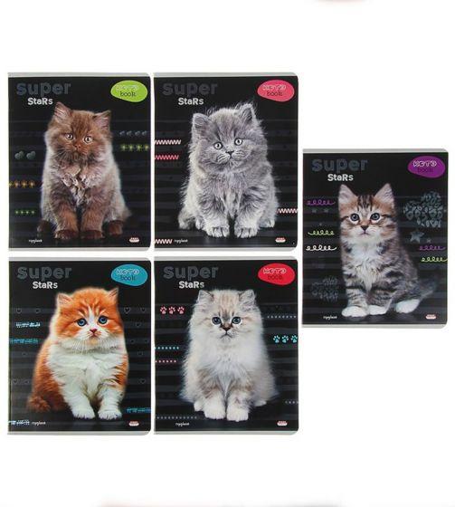 Тетрадь «Красивые кошки», 48 листов, клетка