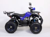 Avantis Classic 8+ 125 сс Квадроцикл бензиновый синий вид 5