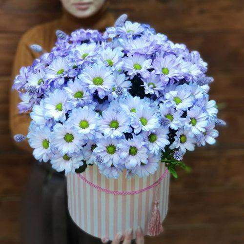 "Коробка цветов ""Облако снов"""