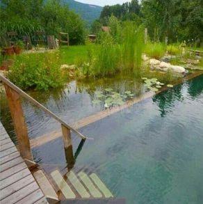 Устройство водоемов и прудов
