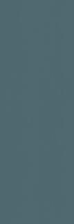 Элемент Петролио 25х75