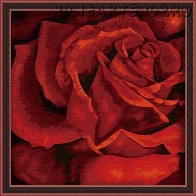"Раскраска по номерам ""Роза страсти"""