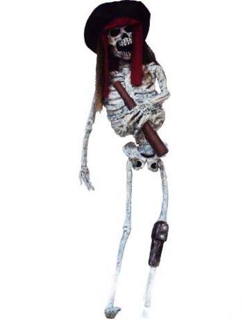 Скелет пирата с подзорной трубой