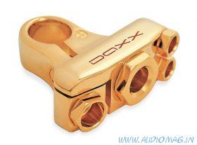 DAXX B30+
