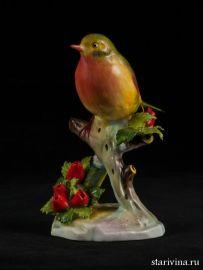 Птица Малиновка Royal Adderley, Англия, сер. 20 века