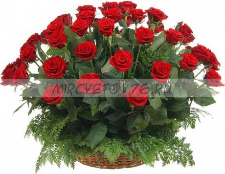 Для любимой 51 роза