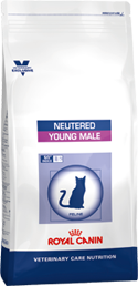 Neutered Young Male (3,5 кг)