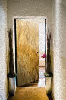 Наклейка на дверь -  Шерсть льва | магазин Интерьерные наклейки