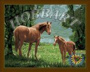 """Картина по номерам """"Жеребенок с мамой"""" 40х50"""