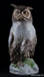 Ушастая сова, Karl Ens, Германия, кон. 19 века