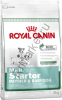 Royal Canin Mini startet mother & babydog