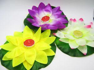 Водные фонарики-цветы