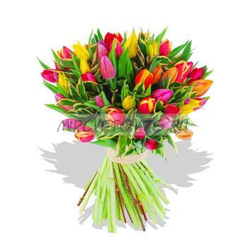 "Букет ""Тропики"" 51 тюльпан"