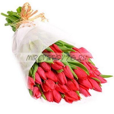"""Букет """"Сью"""" 25 тюльпанов"""