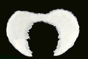 Крылья ангела средние