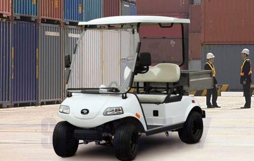Гольфкар Smart Elcar Express 2