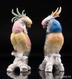 Пара попугаев какаду, Karl Ens, Германия, 1950 гг., артикул 10653
