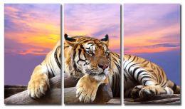 Задумчивый тигр