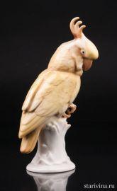 Попугай желтый какаду, Karl Ens, Германия, 1920-30 гг., артикул 10695