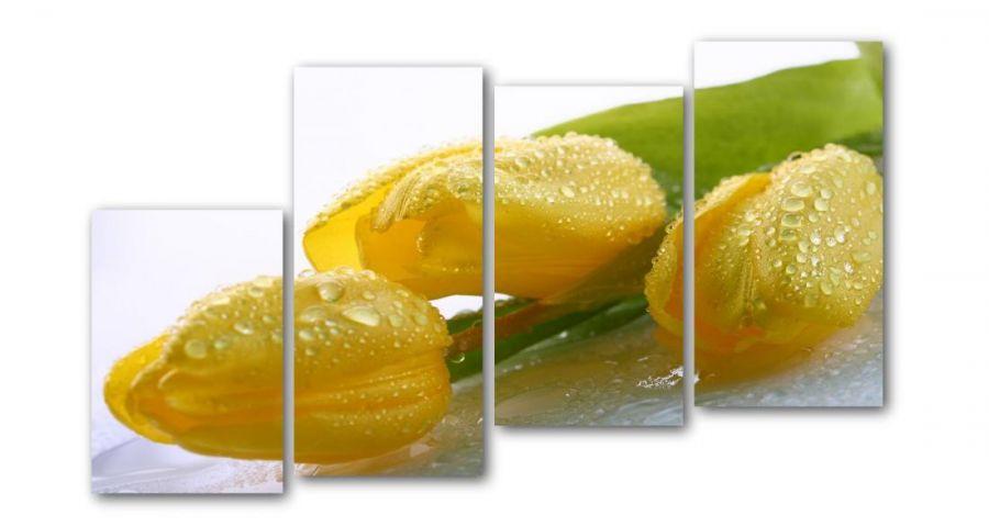 Модульная картина Три тюльпана