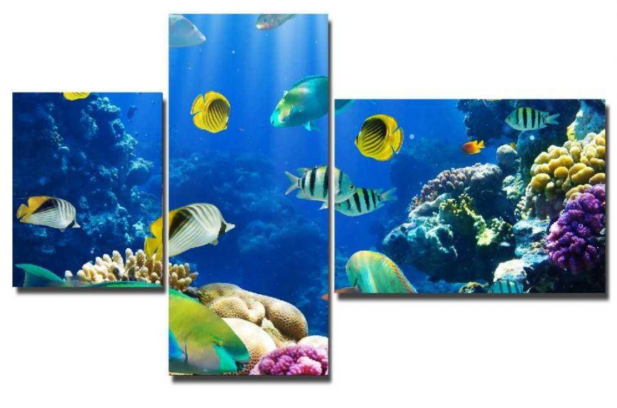 Модульная картина Морские рыбки