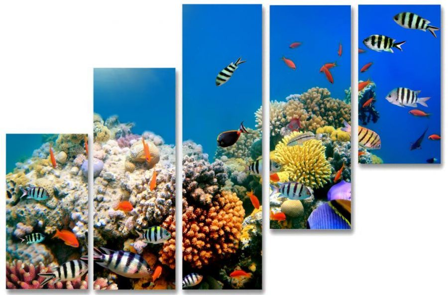 Модульная картина Красивые рыбки